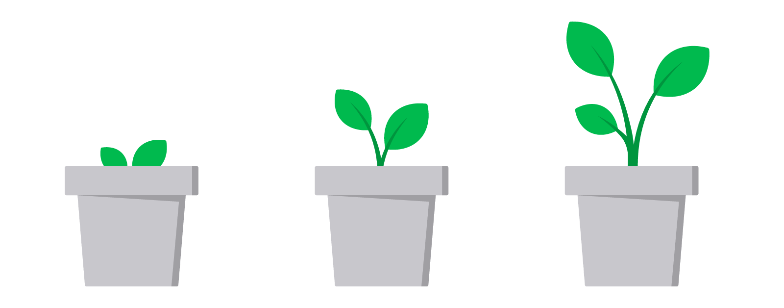 Illustration of a plant growing